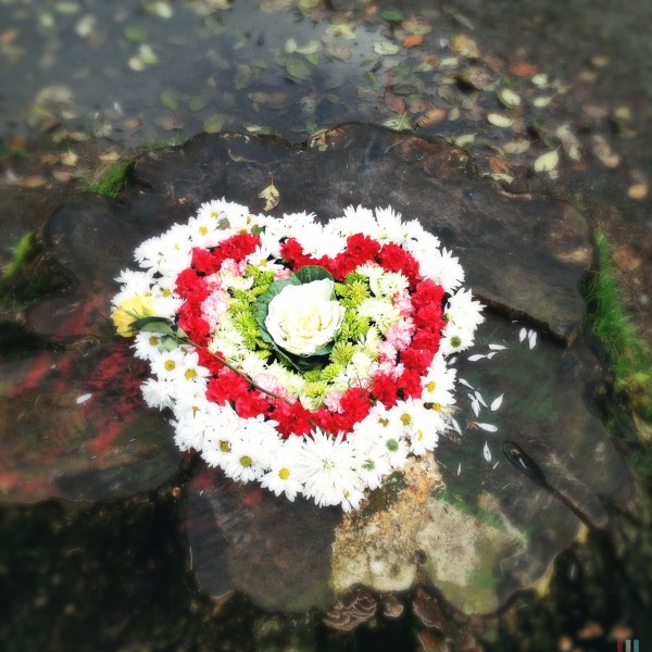 Discovered Heart, Green Lake, Seattle.  December 2012.